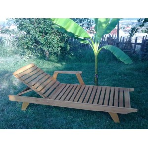 http://all-in-stock.com/1128-thickbox/wooden-sunbed-with-armrest-and-cupholder-ais-03.jpg